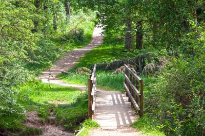 Image result for wide narrow path